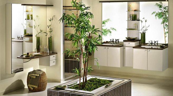 Plantas para el baño: ¿Cuáles son las mejores?